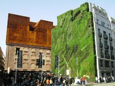 Jardines verticales: arquitectura verde