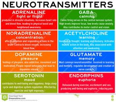 Neurotransmitters are chemicals that help in transmitting signals across a synapse. Different neurotransmitters are associated with different functions. Knowledge about these helps us to treat various neurological conditions by either stimulating or.