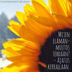 #muutos #elämänmuutos #uskomukset #ajatukset #näkökulma #ajatuksenvoima #elämä