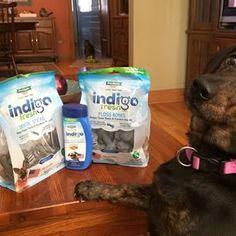 Enter to win Indigo