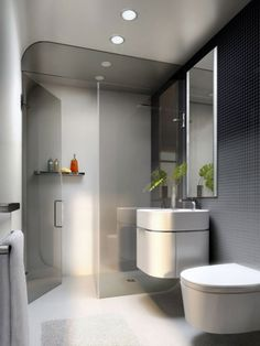 Bathroom Ideas for Small Spaces Accommodate the Three Basic Needs of Common Bathroom: Modern Small Bathroom With Glass ~ dmetree.com Bathroom Inspiration