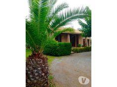 Photos Vivastreet Villa 3 pieces sur Saint-Jean-de-Cornies
