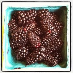 Ahhh...summer - surprise berry delivery on our front porch | 07.15.12 | Photo by Jeff Fisher