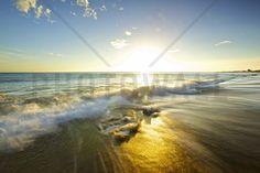 Golden Afternoon at Fangsheng - Tapetit / tapetti - Photowall