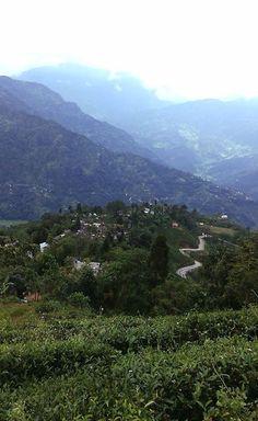 Darjeeling Tea namesake Darjeeling, India where it is grown.......