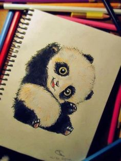 The panda has a question. and the pandas cute Amazing Drawings, Cute Drawings, Drawing Sketches, Amazing Art, Drawing Ideas, Drawing Lessons, Sketching, Illustrations, Illustration Art