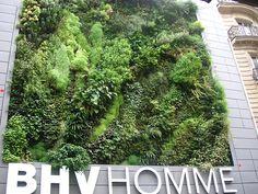 Le mur végétal du BHV Homme à Paris, via Flickr.