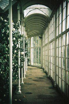 Wollaton Hall Orangery