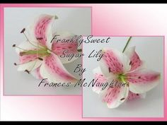 Sugar Flowers by Frances #1: Wired Sugar Lily by Frances McNaughton - CakesDecor