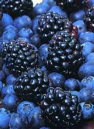 Brabourne Farm: Beautiful Blue Things    292 x 400   37.1 KB    brabournefarm.blogspot.com          amazingpicturesoftheflowers...