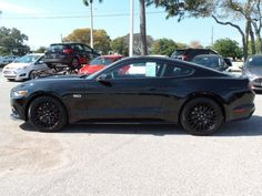 Cars for Sale 2015 Ford Mustang GT Premium in CLEARWATER FL 33763 Coupe & 2015-2016 Ford Mustang Spare Tire Kit at Partscheap.com | Ford ... markmcfarlin.com