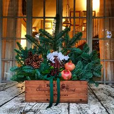 """Bottega"": ... I'm Dreaming Of A Wine Christmas!"