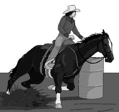 This website has all kinds of gymkhana events and how to use them in therapeutic riding