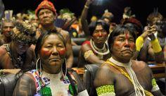 Gil, Bethania, Elza, criolla, Chico César y decenas de artistas de música récord para la demarcación de las tierras indígenas - Foros