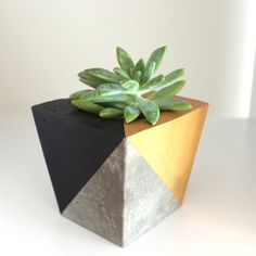 Handmade Concrete Planter Bifold 2 Colours by CanvasAndChalk, $35.00