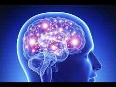 Le Cerveau Et Son Fonctionnement [ Documentaire HD ] - YouTube