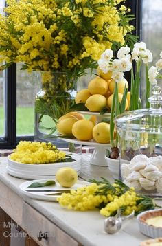 Spring Decor - lemon tart and mimosa to brighten up the winter My French Country Home, French Country Decorating, Decoration Table, Table Centerpieces, Decorations, Masquerade Centerpieces, Centerpiece Ideas, Wedding Centerpieces, Lemon Curd Dessert