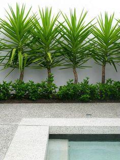 70+ Brilliant Low Maintenance Front Yard Landscaping Ideas #frontyardlandscaping #frontyardlandscapingideas #gardenideas