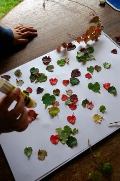 Craft Ideas | DIY Autumn Home Decor Craft Ideas Using Leaves - The Fun Times Guide ...