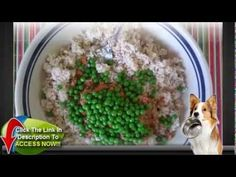 Science Diet Cat Food Coupons | Pet Guide Chicken Recipes Dry, Chicken Flavors, Dog Food Recipes, Diet Cat Food, Vegetable Entrees, Cat Food Coupons, Cat Food Brands, Hills Science Diet, Canned Cat Food
