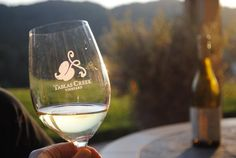 Places to go, wines to drink and restaurants to eat at in #PasoRobles! #travel #wine