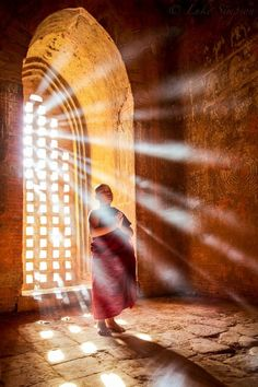 Quotes & Articles on Buddha, Buddhism, Meditation, Dharma, Suffering & Equanimity Amitabha Buddha, Religion, Little Buddha, Buddhist Monk, Tai Chi, Light And Shadow, Belle Photo, Serenity, Mindfulness