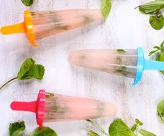 Grapefruit Mint Popsicles Recipe   Paleo inspired, real food