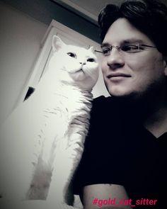 #gold_cat_sitter #catofinstagram #catlovers #catstagram #cat #cats #catsitting #katzenliebe #katze #katzen #cateye #hamburg #bkh #britishshorthaircat #catslife #lovemycat #catslover #catsofworld #catsitter #instacat #loveyourcat #goldcatkatzenbetreuunghamburg#katzensitter by gold_cat_sitter