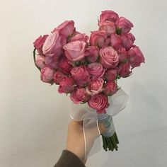 can't give u flowers irl so have these babe xx My Flower, Fresh Flowers, Beautiful Flowers, Prettiest Flowers, Plant Aesthetic, Flower Aesthetic, Plants Are Friends, No Rain, Miraculous Ladybug