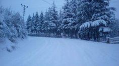 Çamlıyayla ve Gülek Kar Fotoğrafları (Karışık) | Sayfa 44