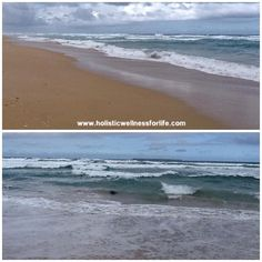 Yambuk Beach this morning. What a wild and stunning beach. The locals tell me it is shark infested. Look close and you will see an island in the bottom photo which is the home of many seals. Well worth a visit and just a short drive from Port Fairy. #portfairy #portfairypics #yambuk #beach #beaches #sharks #seals #sand #water #photooftheday #bestphoto #ocean #waves #nature #australia by holistic_paleo