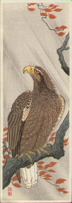 Eagle on a Bough in Autumn Rain by Ohara Koson