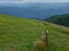 2009-07-18_harmon-den-max-patch_lower-appalachian-trail.jpg (640×480)