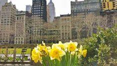44 Ideas De Ny Viaje A Nueva York Anuevayork Nueva York