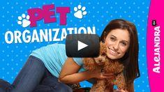 [VIDEO]: Pet #Organization - Watch Here -> http://www.alejandra.tv/blog/2015/06/video-pet-organization/?utm_source=Pinterest&utm_medium=Pin&utm_campaign=Pet+Organization #AlejandraTV