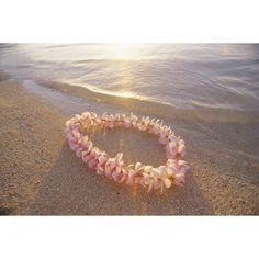 Pale Pink Plumeria Lei In Shoreline Waters With Golden Sunset Reflections Canvas Art - Mary Van de Ven Design Pics (38 x 24)
