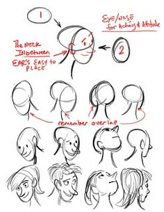 Egg heads and head shapes Sketching Tips, Drawing Tips, Drawing Reference, Drawing Lessons, Cartoon Head, Cartoon Drawings, Cartoon Faces, Different Drawing Styles, Drawing Heads