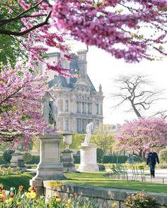Paris Pictures, Paris Photos, French Trip, Paris Garden, Paris In Spring, Louvre, Gris Rose, Visit France, Future Travel