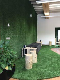 Plants, Artificial Turf, Interior Design, Planters, Plant, Planting