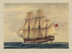 First Fleet ship HMS 'Sirius' (Marine Artist Frank Allen) Yacht Charter Greece, First Fleet, Ship Of The Line, History Activities, Nautical Art, Vintage Nautical, Ship Art, Tall Ships, Model Ships