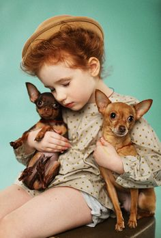 ginger+pups