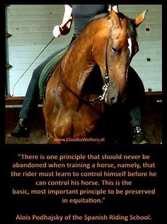 The rider must learn to control himself before he can control his horse