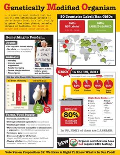 GMO's- Great information, condensed and quick to read.