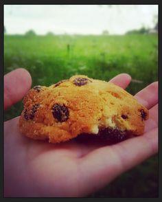 I miei biscotti sono una personalizzazione dei Sanvigilini.Facili e saporiti potete consumarli a colazione con del latte di soia o per una merenda nutriente