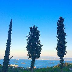 nature universe #sea #blue #green #freshair