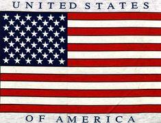 United States America Flag U.S.A Flag 19611wall.jpg
