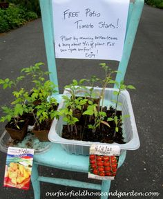 Share the Bounty ~ giving back by gardening