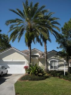 I dream of a home in Florida with a palm tree out front and a pool in the backyard