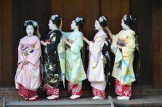 June 2017: maiko Katsuhana, Mameharu, Mamesumi, Mameryu, and Mikako of Gion Kobu by kuumill on Instagram