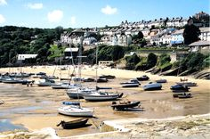 Newquay harbour Wales, this really is a lovely town and beach and there are dolphins too.